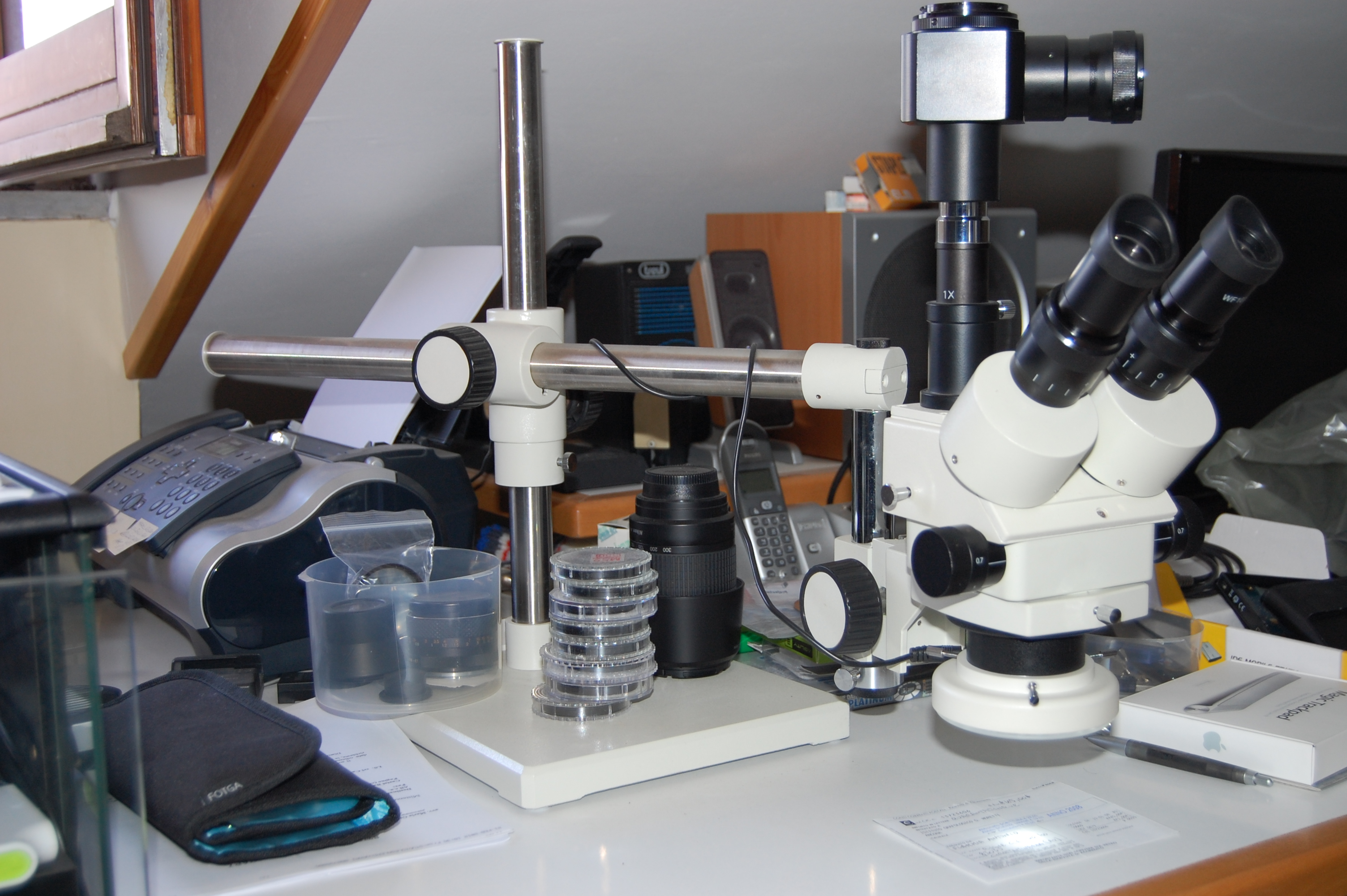 Microscopio Ottico Stereoscopico